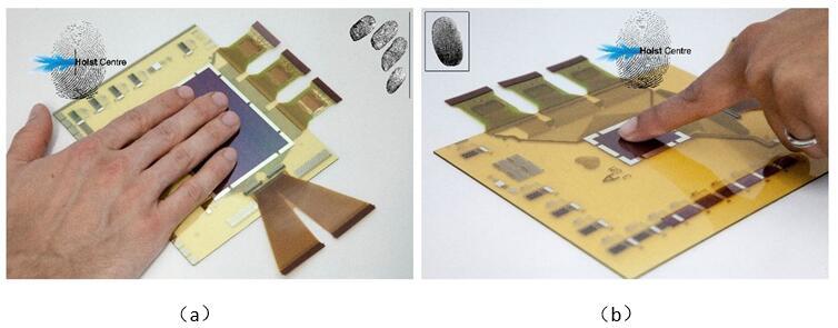 新型薄膜图像传感技术实现柔性薄膜指纹和掌纹识别