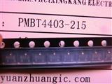PMBT4403-215