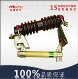 rw4-10/100高压熔断器