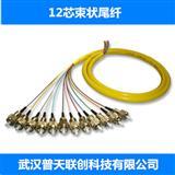 12芯束状尾纤,光纤跳线