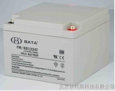 首款广泛使用锂电池的图片