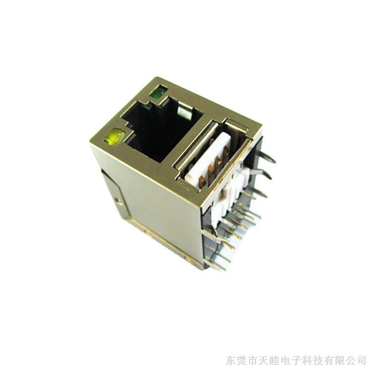 RJ45+USB2.0A公网络插座