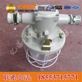 DGS60/127B矿用隔爆型白炽灯,DGS60/127B矿用隔爆型白炽灯特点