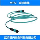 MPO光纤跳线,MPO-MPO 单模光纤跳线,多模光纤跳线