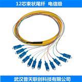 12芯束状尾纤、12芯带状尾纤、12色束状尾纤生产厂家 FC SC LC 单模 多模 万兆 OM3
