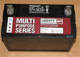 西恩迪LIBERTY 大力神蓄电池MPS12-100 12v100ah 直流屏12v电瓶