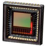 传感器NOIP1SN1300A-QDI