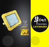 GCD615防爆固态照明灯 LED防爆泛光灯  免维护LED防爆灯 LED防爆投光泛光灯