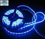 工程照明专用灯带,低压24V  5050  60灯LED灯带