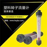 管道式转子流量计液体PVC管塑料浮子流量计上海佰质仪器仪表