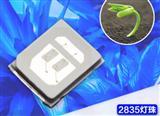 led植物灯蓝光灯珠价格优惠