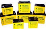 上海 冠军电池NP100-12 UPS电源 直流屏专用电池12V100AH现货报价