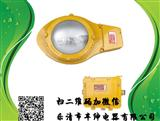 BLW6217高亮度防爆道路灯厂家,BLW6217价格