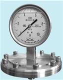 布莱迪隔膜压力表 YTNP-100系列