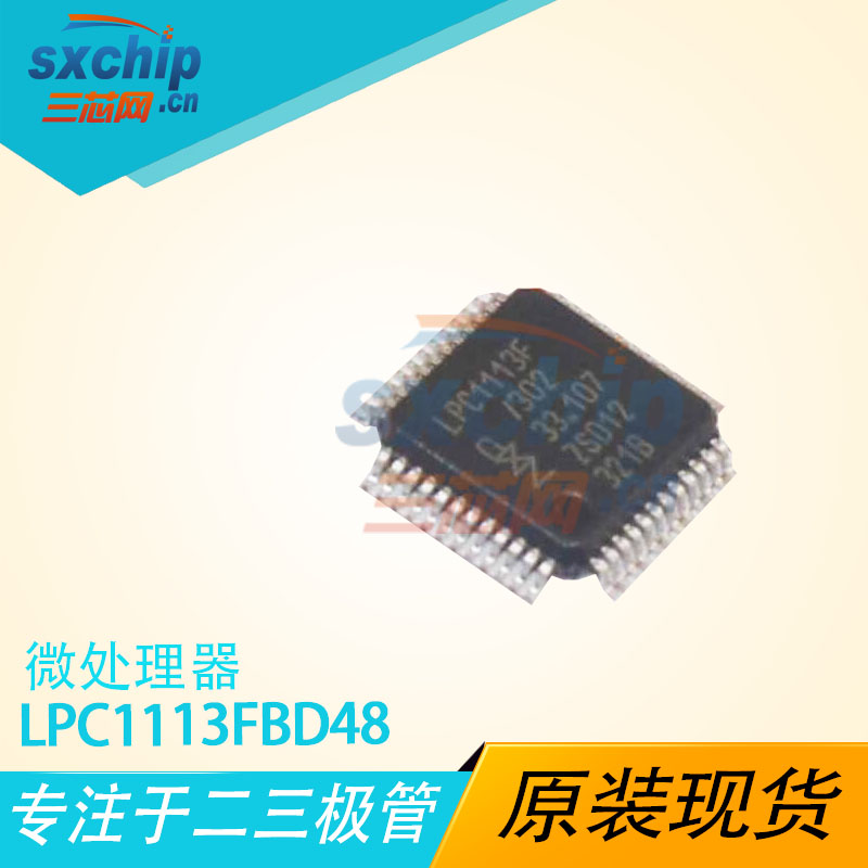 LPC1113FBD48/302,1