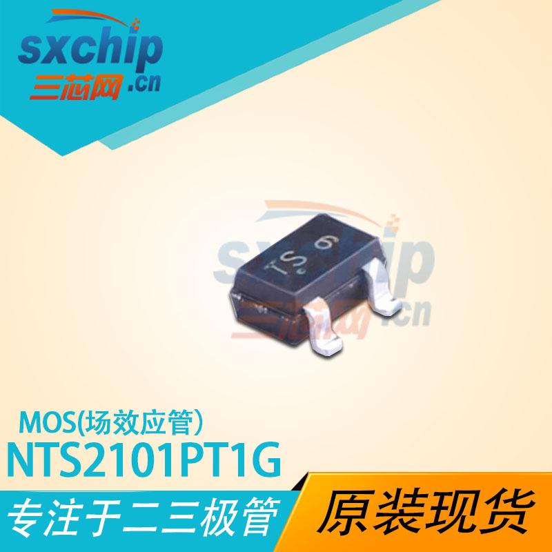 NTS2101PT1G