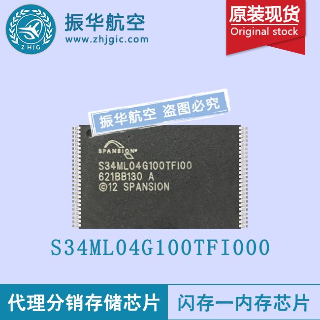 S34ML04G100TFI000