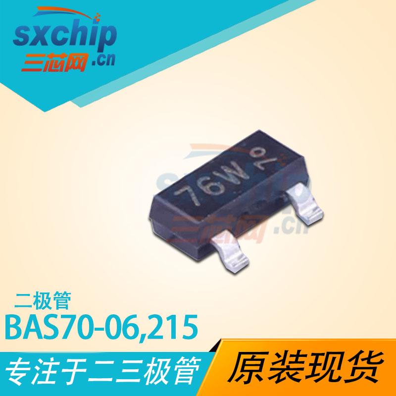BAS70-06,215