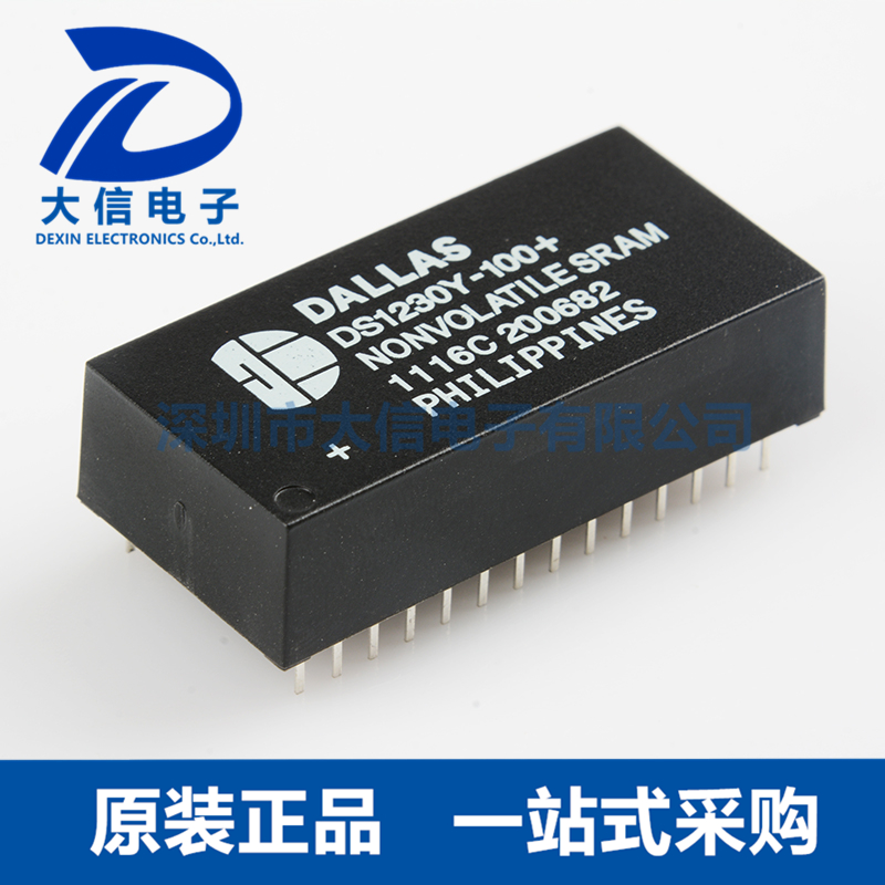 DS1230Y-100+