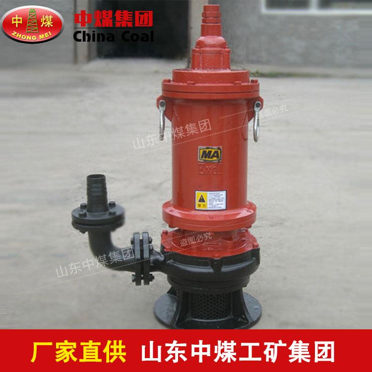 防爆矿用潜水排污泵产品展示,BQW防爆矿用潜水排污泵